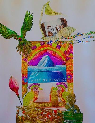 Planet-or Plastic Valerie Kullack Visual Artist Bangalow Australia